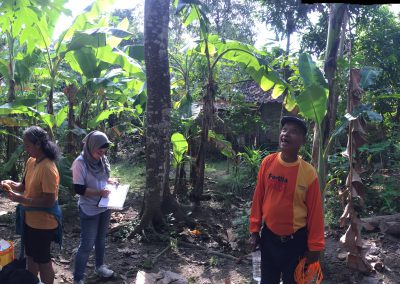 Backyard sampling KNAW-SPIN project, Central Java